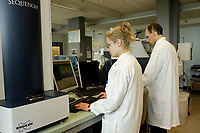 Montreal (Qc) CANADA, June 2007 File Photo<br /> Genomic research at McGill University in Montreal<br /> under  Genome Quebec funding.<br /> <br /> <br /> photo : (c)2007, Pierre Roussel -  images Distribution