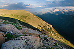 alpine, landscape, tundra, columbine, Forest Canyon, summer, evening, clouds, Trail Ridge, Rocky Mountain National Park, Colorado, USA