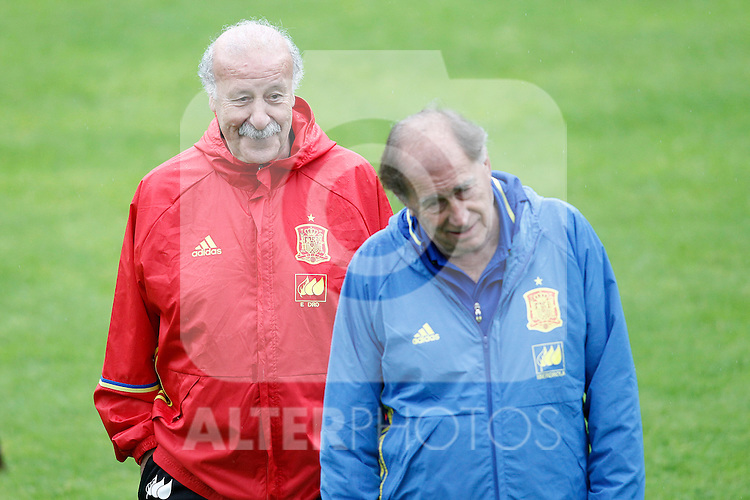 Spain's coach Vicente del Bosque (l) and his second Toni Grande during preparing training stage to Euro 2016. May 30,2016.(ALTERPHOTOS/Acero)