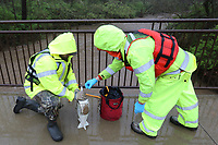 Taylor Murphey (cq) (left) and Jonathan Chick, both with the United States Geological Survey, prepare to take a sample Thursday, March 19, 2020, from a bridge on the Razorback Greenway over Clear Creek in Johnson. The survey monitors several creeks and waterways including taking storm event samples. Check out nwaonline.com/200320Daily/ and nwadg.com/photos for a photo gallery.<br /> (NWA Democrat-Gazette/David Gottschalk)