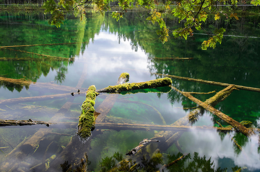 The beautiful shades of green at the beautiful Big Spring Kitch-iti-kipi. Manistique, MI