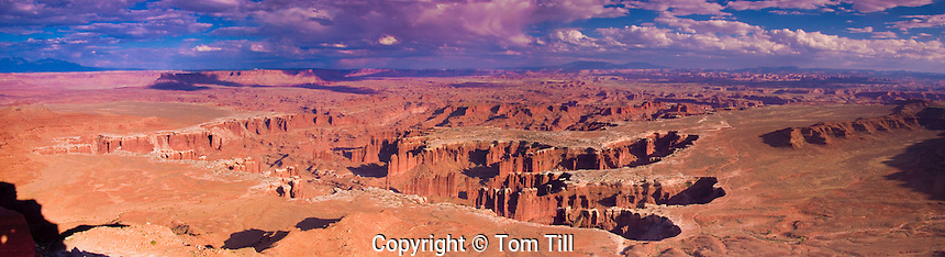 Panoramic view from Grandview Point   Canyonlands National Park, Utah View to the White Rim, Colorado, Monument Basin   Abajo Mountains beyond
