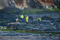"Friday  29 April 2016<br /> Pictured: Coastguards walk along the cost with a rescue dog <br /> <br /> Re: Two fishermen who went missing after a boat sank in Pembrokeshire went overboard while lobster pots were being thrown into the sea.<br /> Gareth Willington, 59, from Carew, died after his boat The Harvester sank off St David's Head on 28 April.<br /> The body of his son, Daniel, 32, has never been found.<br /> Gareth Willington was not wearing a lifejacket when he was found, a report by the Marine Accident Investigation Branch said.<br /> The investigation found the pair were lobster fishing near Ramsay Island when Daniel Willington may have become entangled in ropes on the deck.<br /> His father may have tried to help him before both men went into the water ""in quick succession"", it said."