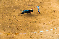 A Spanish bullfighter (banderillero) performs at the bullring in Granada, Spain, 7 June 2006.