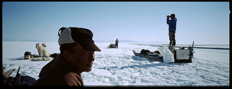 Hunter Tobias Simigaq stands on the rear of sled as he scans with binoculars looking for seals sleeping on the ice. A changing climate - which shows itself in warming temperatures, earlier summers, later winters, and shrinking and thinning sea ice - threatens the livelihoods and traditions of some of the last subsistence hunters on Earth, the Polar Inuit communities of far Northwest Greenland.