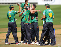 130228 Cricket - Wellington Firebirds v Central Stags