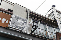 "A cat statue on a roof in Yanaka Ginza shopping arcade, Yanaka, Tokyo, Japan, April 19, 2012. Yanaka is part of Tokyo's ""shitamachi"" historic working class wards. Recently it has become popular with Japanese and foreign tourists for its many temples, shops, restaurants and relaxed atmosphere."