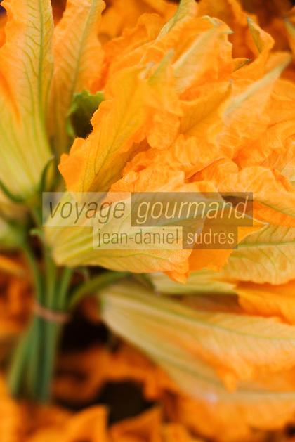 Europe/France/Provence-Alpes-Côte d'Azur/84/Vaucluse/Lubéron/Apt : Fleurs de Courgettes, Marché paysan, Cours Lauze de Perret