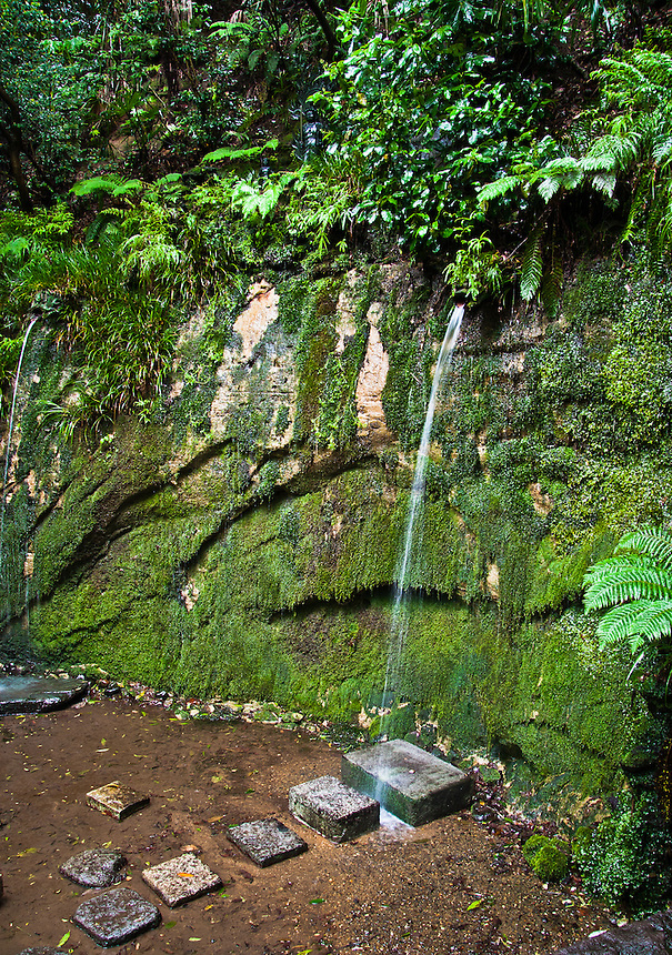Water pouring from dragons mouth known as Fudo no Taki in Tokyo`s Todoroki Valley.Used for Priest ritual purification training known as Misogi.