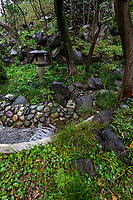 Todoroki Ravine Japanese Garden was built on a slope, with rocks and boulders providing the contours and shapes. Unlike the usual fussy manicured parks and Zen gardens, this gorge is wild and untamed with a jungle atmosphere - home to birds and other animals. Todoroki is only minutes from central Tokyo,but is a world away from the city with bamboo, trees, shrines and the sounds of the river to wash away urban sounds. The ravine was formed by the Yazawa River as it heads for theTama River, it is the only ravine and valley in Tokyo stretching along a one-kilometer course along a path viewing waterfalls along the way.  Todoroki Valley also has a natural water spring and is more of an adventure stroll than a typical Japanese garden, despite its name.