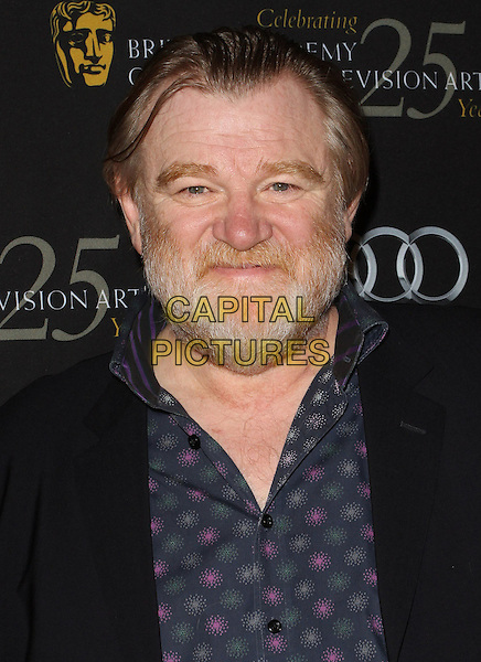 Brendan Gleeson.18th Annual BAFTA Los Angeles Awards Season Tea Party held at the Four Seasons Hotel, Beverly Hills, California, USA..January 14th, 2012.headshot portrait blue shirt black suit jacket beard facial hair  .CAP/ADM/KB.©Kevan Brooks/AdMedia/Capital Pictures.