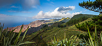 BNPS.co.uk (01202 558833)<br /> Pic: StHelenaTourism/BNPS<br /> <br /> Mountainous St Helena.<br /> <br /> Wanted - Little Napoleons, tall people need not apply...<br /> <br /> The British outpost of St Helena is advertising for a Napoleon impersonator for its bicentenary celebrations of the French dictator's death there.<br /> <br /> The unique role for wouldbe Little Generals is being advertised for both male residents on the tiny island in the South Atlantic and people living in the UK.<br /> <br /> Although having a French language is not essential, being vertically challenged and having a plump frame would be an advantage.<br /> <br /> The successful candidate will be tasked with impersonating Napoleon Bonaparte at ceremonies and events being held next year in the run up to the 200th anniversary of his death in 1821.