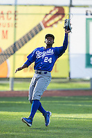 Burlington Royals left fielder Alex Newman (24) catches a fly ball during the game against the Bristol Pirates at Boyce Cox Field on July 10, 2015 in Bristol, Virginia.  The Pirates defeated the Royals 9-4. (Brian Westerholt/Four Seam Images)