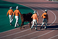 "Bevo is the mascot of the athletic programs at the University of Texas at Austin. Bevo is a Texas longhorn steer with burnt orange and white coloring from which the university derived its color scheme. The profile of the Longhorn's head and horns gives rise to the school's hand symbol and saying: ""Hook 'em Horns""."
