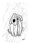 (One dog shelters another from the rain with its droopy ears)