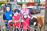 Donnacha, Bryan Daly, Juileanne O'Connor and Diarmuid Daly loving the small ponies at the Castleisland Horse fair on Saturday   Copyright Kerry's Eye 2008