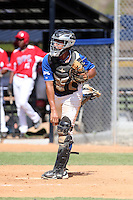 Johandro Alfaro participates in the Dominican Prospect League 2014 Louisville Slugger Tournament at the New York Yankees academy in Boca Chica, Dominican Republic on January 20-21, 2014 (Bill Mitchell)