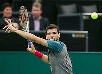 11-02-14, Netherlands,Rotterdam,Ahoy, ABNAMROWTT,Grigor Dimitrov(BUL)<br /> Photo:Tennisimages/Henk Koster