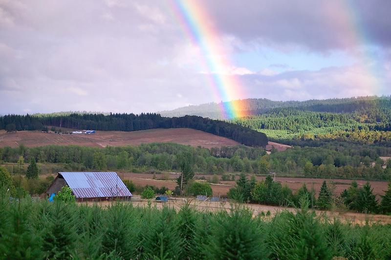 Rainbow over farmland with barn. Near Alpine, Oregon