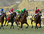 December 1 2018: #6 Raging Bull, ridden by Joel Rosario, takes on #4 River Boyne, ridden by Flavien Prat, in the stretch of the Hollywood Derby (Grade 1) on December 1, 2018, at Del Mar Thoroughbred Club in Del Mar, CA.