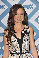 Mary Lynn Rajskub at the Fox TCA All-Star Party at the Langham Huntington Hotel, Pasadena.<br /> January 13, 2014  Pasadena, CA<br /> Picture: Paul Smith / Featureflash