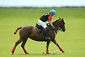 Tyrella House Polo player  Nicky Wilson in action at Tyrella House, County Down, Monday June3rd, 2019. (Photo by Paul McErlane for Belfast Telegraph)