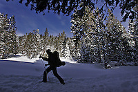 LOS ANGELES,CA - JANUARY 25, 2008:  A Skier heads out on a cross-country trek into upper Coldstream Valley. Lost Trail Lodge near Truckee is an amazing backcountry destination. Hidden four miles into Coldstream Canyon, the lodge, in beautiful Sierra Nevada's give the phrase, getting there is half the fun, new meaning. Once at the lodge, guests are cut off from society. No phones or cable TV.