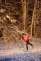 Cross country skiing, Fairbanks, Alaska