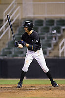 Jameson Fisher (11) of the Kannapolis Intimidators at bat against the Hickory Crawdads at Kannapolis Intimidators Stadium on April 22, 2017 in Kannapolis, North Carolina.  The Intimidators defeated the Crawdads 10-9 in 12 innings.  (Brian Westerholt/Four Seam Images)