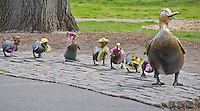 "Ducklings Stauary in the Boston Commons is a tribute to children's book author Robert McClusky who wrote ""Make Way for Ducklings"", Boston, MA"
