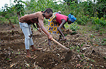 "Patience Gonwoe (left), 19, works with several dozen women to grow cassava on a six-acre farm in Mount Barclay, Liberia. The income-generating project, called ""Say No to Poverty,"" is administered by the National Federation of Women Employees and Allied Workers, with financial support from United Methodist Women."