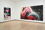 Marilyn Minter: Pretty/Dirty Installation Views