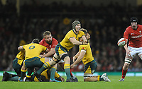 Australia's David Pocock whips the ball out <br /> <br /> Photographer Ian Cook/CameraSport<br /> <br /> Under Armour Series Autumn Internationals - Wales v Australia - Saturday 10th November 2018 - Principality Stadium - Cardiff<br /> <br /> World Copyright © 2018 CameraSport. All rights reserved. 43 Linden Ave. Countesthorpe. Leicester. England. LE8 5PG - Tel: +44 (0) 116 277 4147 - admin@camerasport.com - www.camerasport.com
