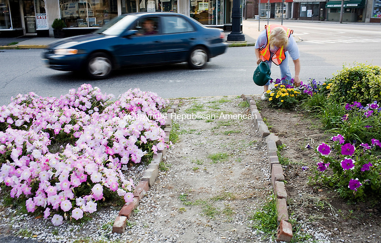 "TORRINGTON--18 July 08--071808TJ15 - Elaine Turri, of Torrington, a member of the Beautification Committee, waters flowers in a median on Main Street in Torrington on Friday, July 18, 2008.  ""John and I just get out here and do it,"" said Elaine, who has been on the committee for nine years, ""you get satisfaction when people see you...they say 'you do such a nice job.'"" (T.J. Kirkpatrick/Republican-American)"