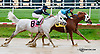A Ladys Man winning at Delaware Park on 10/7/13