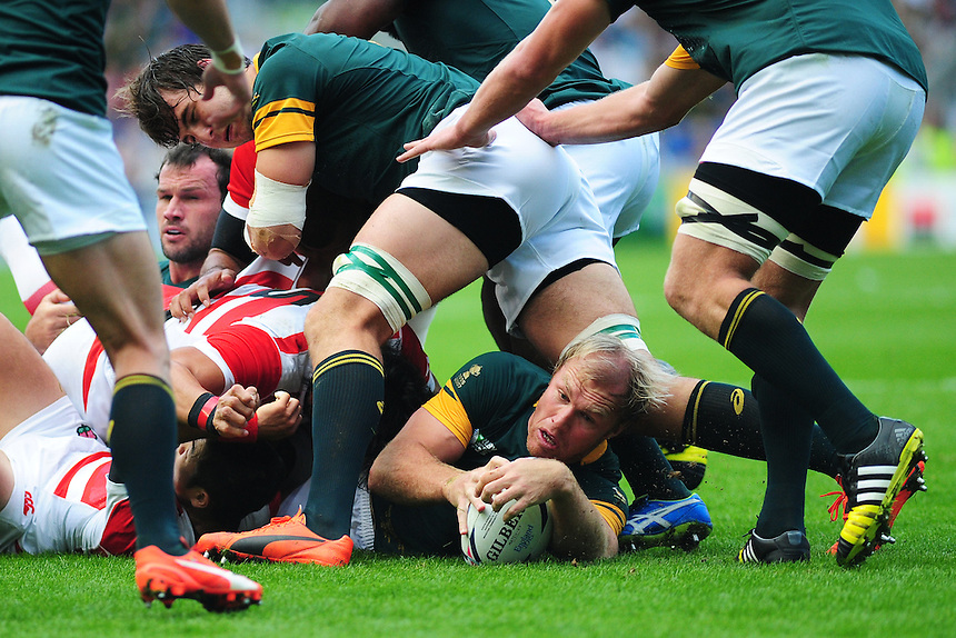 South Africa's Schalk Burger wins possession for his side at the ruck<br /> <br /> Photographer Kevin Barnes/CameraSport<br /> <br /> Rugby Union - 2015 Rugby World Cup - Japan v South Africa - Saturday 19th September 2015 - The American Express Community Stadium - Falmer - Brighton<br /> <br /> &copy; CameraSport - 43 Linden Ave. Countesthorpe. Leicester. England. LE8 5PG - Tel: +44 (0) 116 277 4147 - admin@camerasport.com - www.camerasport.com