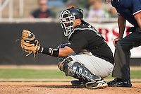 Catcher Francisco Pena (6) of the Savannah Sand Gnats on defense at Fieldcrest Cannon Stadium in Kannapolis, NC, Sunday July 20, 2008. (Photo by Brian Westerholt / Four Seam Images)