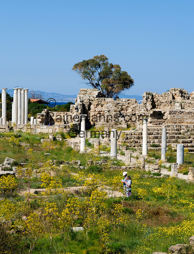 CYPRUS, North cyprus, Salamis: ancient settlement and archaelogical excavation<br />