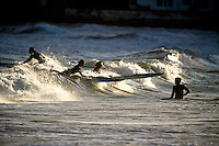 Two female board paddlers catch a wave during a late afternoon training session at Lyall Bay