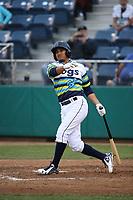 Eugene Helder (9) of the Everett AquaSox bats against the Boise Hawks at Everett Memorial Stadium on July 21, 2017 in Everett, Washington. Boise defeated Everett, 10-4. (Larry Goren/Four Seam Images)