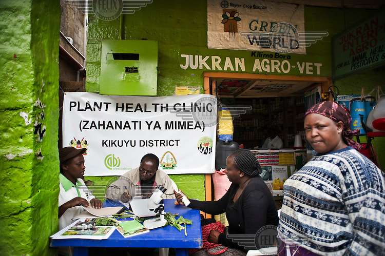 A Plant Health Clinic on market day in the village of Wangigi. Farmers visiting the market can come to see a plant pathologist and show them samples of their crops. The professionals, sitting behind a table, use their knowledge, a microscope and reference material to diagnose the disease, virus, parasite or other problem the crop is suffering from. With the doctor's prescription farmers can get the right pesticides or treatment for their crops. The Plant Clinics are organized by CABI (Centre for Agricultural Bioscience International) Africa, part of an international crop science institute.