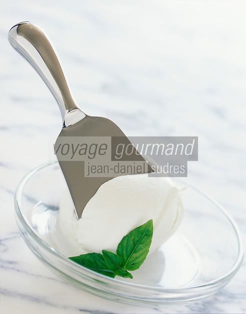 Gastronomie générale / Cuisine générale /Fromage: Mozzarella - Fromage frais-