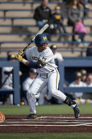 Michigan Wolverines designated hitter Jordan Nwogu (42) at bat against the San Jose State Spartans on March 27, 2019 in Game 1 of the NCAA baseball doubleheader at Ray Fisher Stadium in Ann Arbor, Michigan. Michigan defeated San Jose State 1-0. (Andrew Woolley/Four Seam Images)