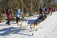 Ellen Halverson and team run past spectators on the bike/ski trail during the Anchorage ceremonial start during the 2014 Iditarod race.<br /> Photo by Britt Coon/IditarodPhotos.com
