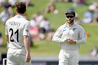1st December 2019, Hamilton, New Zealand;  Kane Williamson polishes the ball. International test match cricket, New Zealand versus England at Seddon Park, Hamilton, New Zealand. Sunday 1 December 2019.