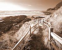 Fenced pathway to beach. Near Yachats, Oregon.
