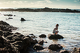 HAWAII, Oahu, North Shore, individuals in the water at Shark's Cove in Pupukea Beach Park