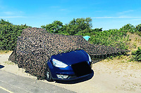 Tourists cover up their illegal roadside BBQ by hiding their car under a camouflaged tarpaulin