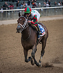 May 11, 2019: Firenze Fire, ridden by Irad Ortiz Jr, wins the 2019 running of the Runhappy at Belmont Park in Elmont, NY. Sophie Shore/ESW/CSM