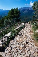 Spanien, Mallorca, Weg auf Puig de Maria bei Pollenca